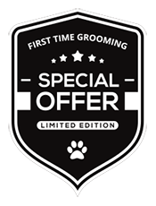 Special-offer-graphic_smaller