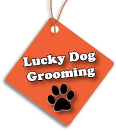 Lucky Dog Grooming